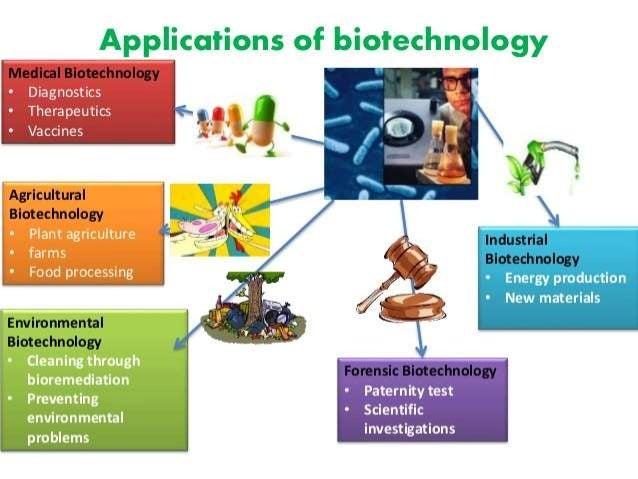 application of plant biotechnology pdf