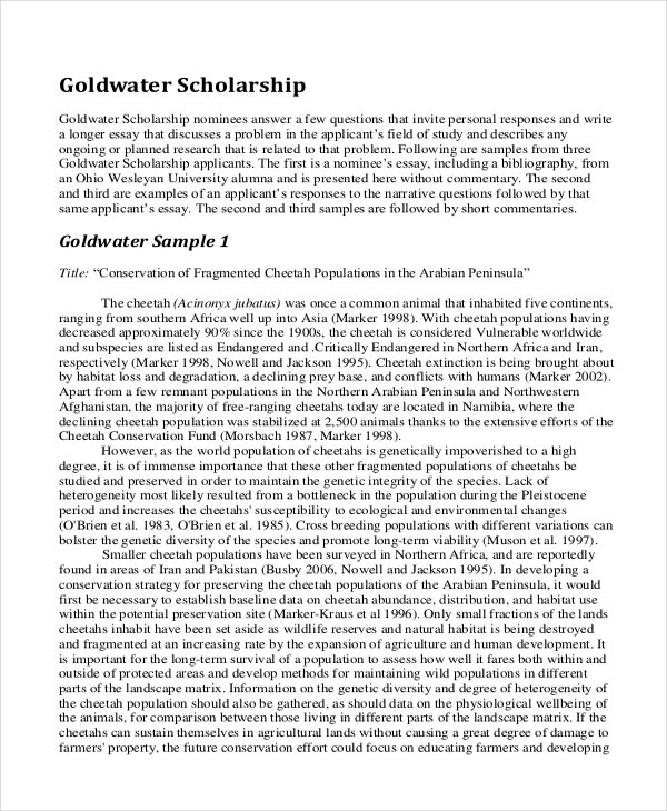 a college application essay sample