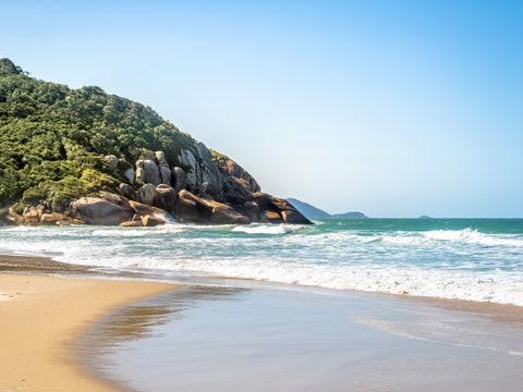 brazilian consulate miami visa application