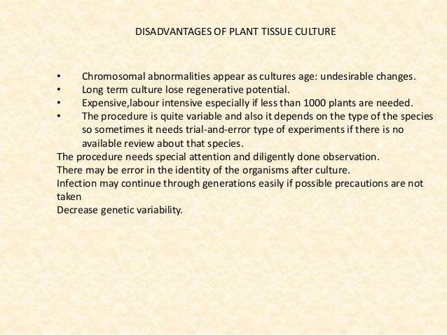 application of plant genetic engineering in crop improvement ppt